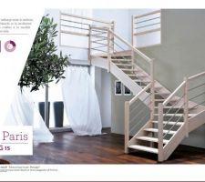 voici le modele de notre futur escalier <br /> Escalier PLASSE modéle PARIS G15 <br /> nous il sera droit et couleur naturel