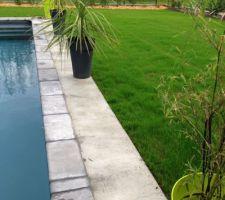 margelles piscine posees