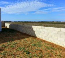 mur nord prise cote est