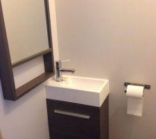 les toilettes etant separes ils ont leur propre lave main avec miroir assorti pas besoin de passer par notre salle de bain pour les invites