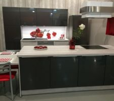 Notre cuisine aviva : modèle d'expo : c'est la couleur de façade qu'on a choisi, un peu plus clair en réalité.