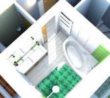 organisation definitive salle de bain 1er etage