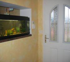 Vu de l'aquarium côté entrée et dégagement cuisine... on en profite de chaque coté ! c'est vraiment sympa