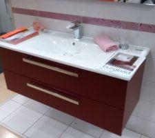 Meuble de la salle de bain principale (avec double vasque et 4 tiroirs)