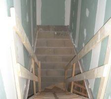 photo escalier d 39 interieur desservant le sous sol 201 photos. Black Bedroom Furniture Sets. Home Design Ideas
