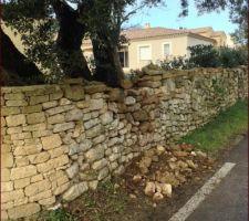 avec le vent l arbre a bouge et le mur et pierre c est ecroule
