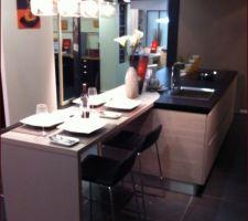 notre future cuisine reception prevue en avril