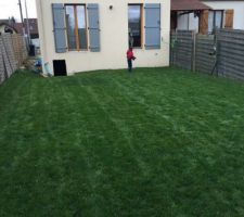 Notre jardin après la tonte. Hauteur non négligeable  Vivement notre terrasse!!... mais quand?