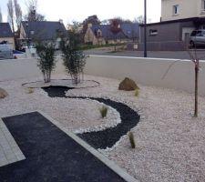 Jardinet aménagé  facon jardin minéral avec bambous et cerisier pleureur
