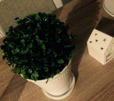 decoration noz cyrillus