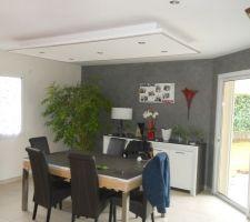 faux plafond salon avec lumiere indirect au plafond et sur le meuble