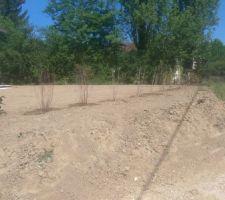 les jardins du guiers nos paysagistes qui ont fait du tres bon travail