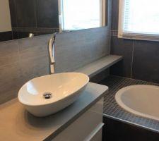 Plan de travail, vasque et mitigeur en place