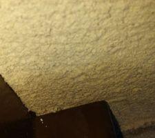 Infiltration eau au niveau des menuisieries des fenêtres