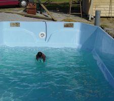 premier essai de baignade par un specialiste pour validation technique en haut a droite on voit le tuyau qui permettra de pomper l eau a l exterieur de la coque s il y a besoin de vider la piscine un jour et ainsi eviter qu elle remonte par flottaison
