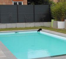 Utilité annexe d'une piscine