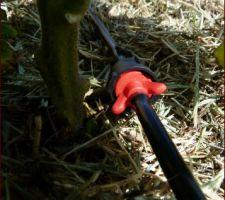 Mise en place du goutte à goutte dans le potager Etape 2: Mise en place: goutteur en ligne sur les tuyaux capillaires