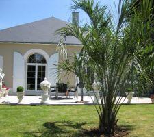 après un petit séjour sur l?Île de brehat et c'est magnifique ph?nix envie de planter ce genre de palmier hélas chez nous risque de gèle donc dans le même esprit mais qui ne craint pas le froid la plantation d'un butia capitata