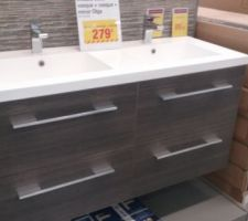 achat du meuble de salle bain une bonne affaire pour une double vasque