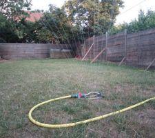 Arrosage du jardin avec l'eau de récupération d'une cuve de 1000 litres.