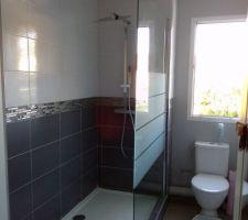 paroi de douche et spots enfin poses maintenant manque plus que le changement du meuble ainsi que le lavabo est tout sera ok