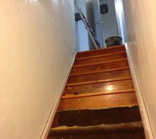 cage d escalier en cours de renovation