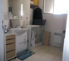 La salle de bain lavabo et ballon