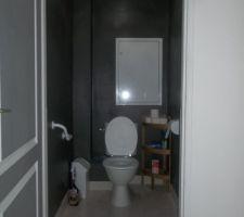 Nos wc teinte gris poivré