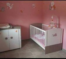 Chambre bébé9 jules avec thème iris et babette