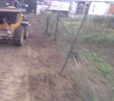 Fin enlèvement rangée de thuyas pour créer une voie d'accés