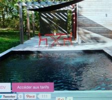 Idée piscine bois liner noir