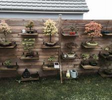 mur de bonsai que l on doit peindre en anthracite le mur pas les bonsai pour s accorder avec le reste de la cloture