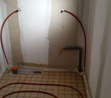 Préparation pour urinoir et WC
