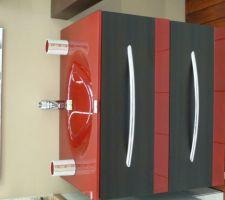 Coup de foudre commun pour ce meuble de salle de bain...aussitô vu aussitôt acheté  il restera à trouver la robinetterie (non comprise)