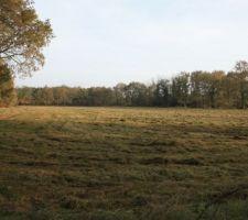 La grande prairie
