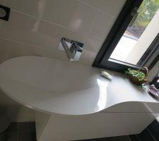 ma super belle vasque pli pas encore choisi de miroir