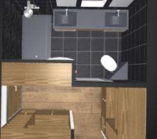 nouvelle version du dressing et de la sde wc de la suite parentale 3 elements de 150 cm dans le dressing deux de 60 cm de profondeur avec penderie de 100 cm etageres de 50 cm et un de 50 cm de profondeur avec 3 etageres de 50 cm