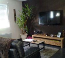Salon couleur peinture expresso meuble tv tikamoon