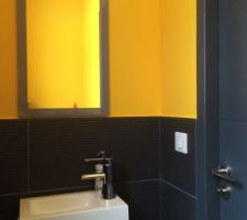 WC moutarde et noir, côté lave-mains