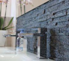 Briques de parements SDB