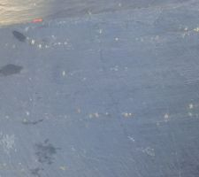 Présence de pyrite sur les ardoises