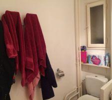 Salle de bain coté WC