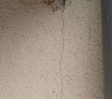 Fissure longue de 80cm