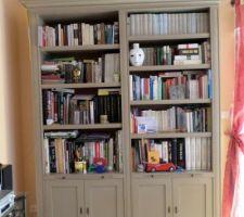 bibliotheque de chez roche et bobois gris clair