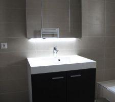 Meuble salle de bain, bas de CCL haut de Leroy Merlin