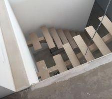 escalier du bas