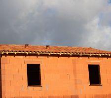 La toiture: brun cuivré nuancé