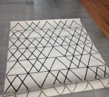 tapis pour le salon pour la deco pe16