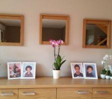 vive les orchidees