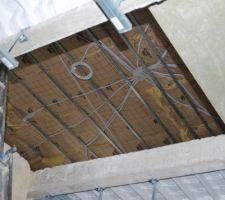 la pieuvre de l etage